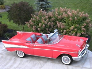 1957 Bel Air Converitible
