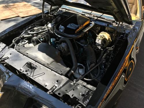 F42C9C0D-7519-4450-91C8-36AC1B5312BB.jpeg